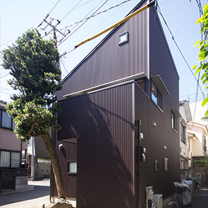 makinoki House